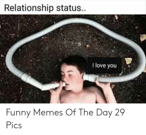 Funny, Love, and Memes: Relationship status.  I love you Funny Memes Of The Day 29 Pics