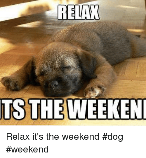 Dogs, Memes, and The Weekend: RELAX  TS THE WEEKEN Relax it's the weekend      #dog #weekend