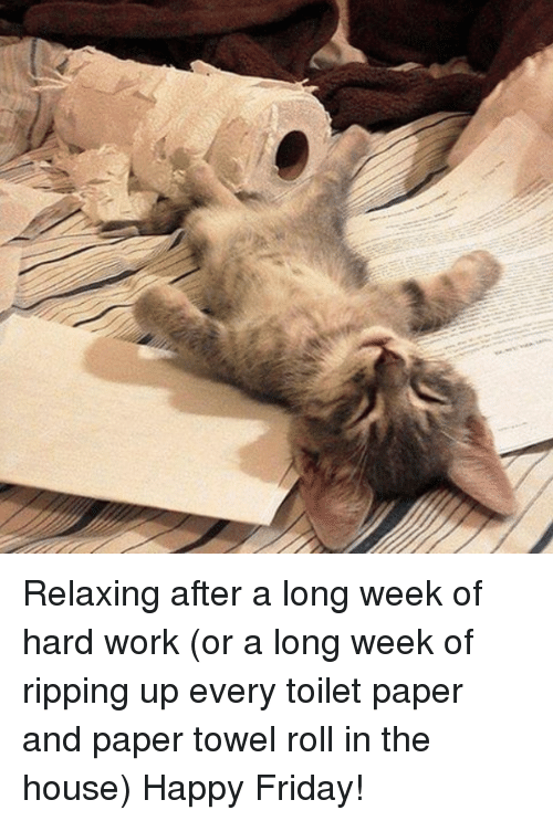 Memes, 🤖, and Toilet Paper: Relaxing after a long week of hard work (or a long week of ripping up every toilet paper and paper towel roll in the house) Happy Friday!