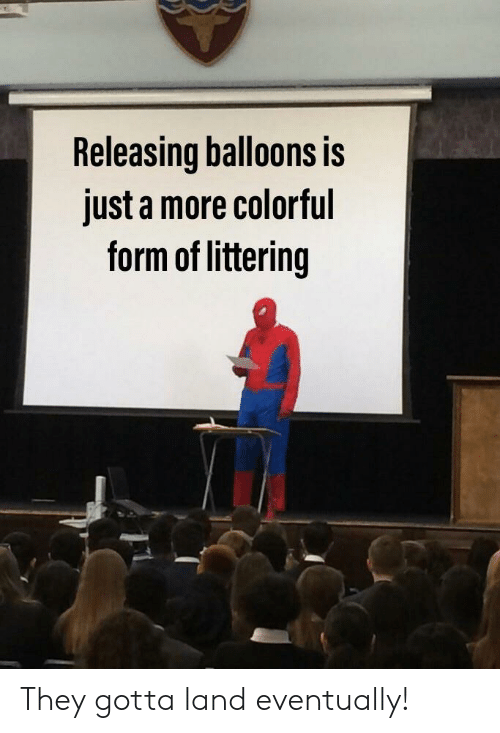 Reddit, They, and Balloons: Releasing balloons is  just a more colorful  form of littering They gotta land eventually!