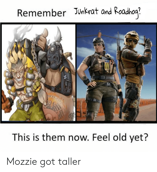 Remember Junkrat and Roadhoa? This Is Them Now Feel Old Yet? Mozzie