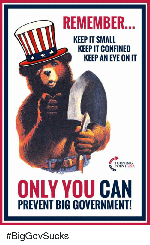 Memes, Government, and Big Government: REMEMBER.  KEEP IT SMALL  KEEP IT CONFINED  KEEP AN EYE ON IT  RNING  INT USA  ONLY YOU CAN  PREVENT BIG GOVERNMENT! #BigGovSucks