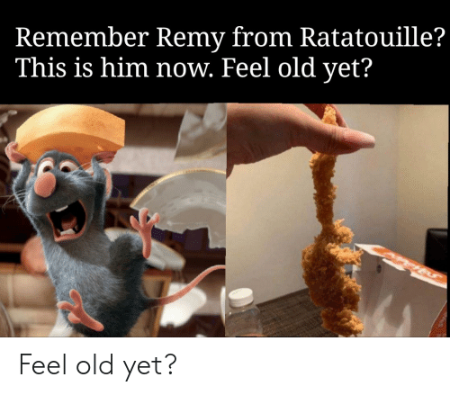 Remember Remy From Ratatouille This Is Him Now Feel Old Yet Feel Old Yet Funny Meme On Me Me