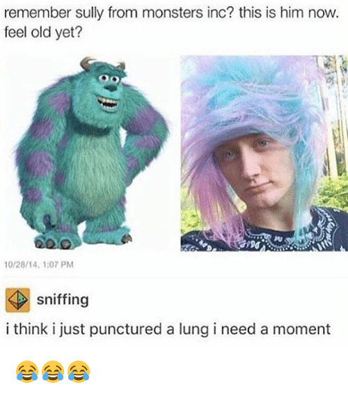 remember sully from monsters inc this is him now feel old yet