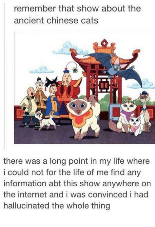 Cats, Internet, and Life: remember that show about the  ancient chinese cats  there was a long point in my life where  i could not for the life of me find any  information abt this show anywhere on  the internet and i was convinced i had  hallucinated the whole thing