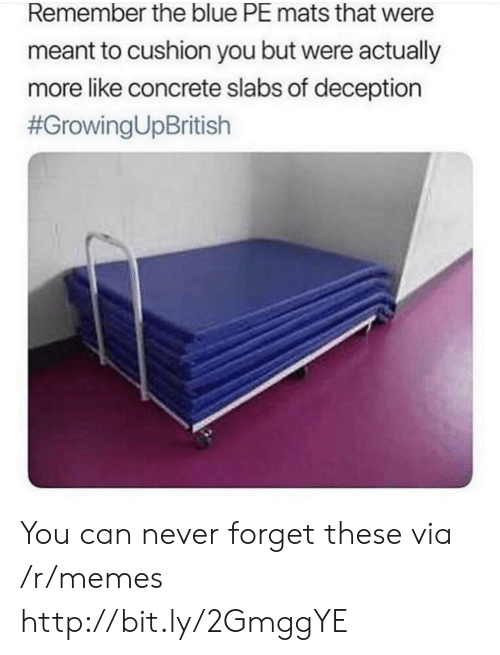 Memes, Blue, and Http: Remember the blue PE mats that were  meant to cushion you but were actually  more like concrete slabs of deception  You can never forget these via /r/memes http://bit.ly/2GmggYE