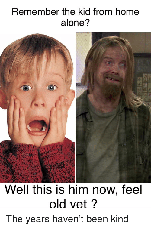 Remember The Kid From Home Alone Well This Is Him Now Feel Old Vet