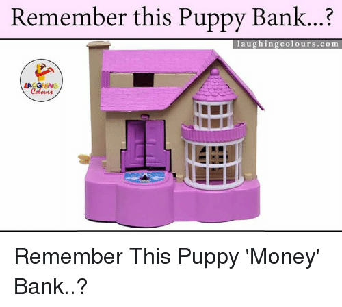 Remember This Pupp Y Bank Laughingcolourscom Remember This Puppy