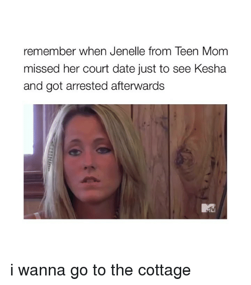 Date, Kesha, and Teen Mom: remember when Jenelle from Teen Mom  missed her court date just to see Kesha  and got arrested afterwards i wanna go to the cottage