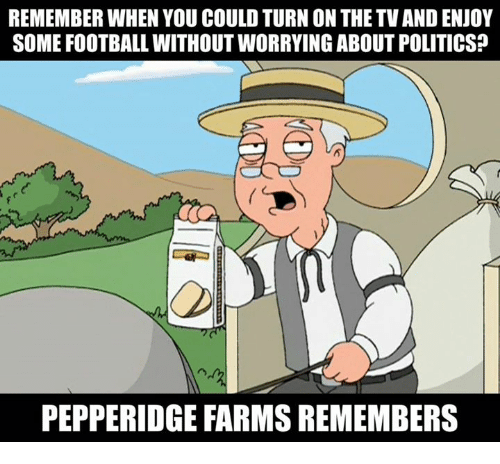 Football, Nfl, and Politics: REMEMBER WHEN YOU COULD TURN ON THE TV AND ENJOY  SOME FOOTBALL WITHOUT WORRYING ABOUT POLITICS?  PEPPERIDGE FARMS REMEMBERS