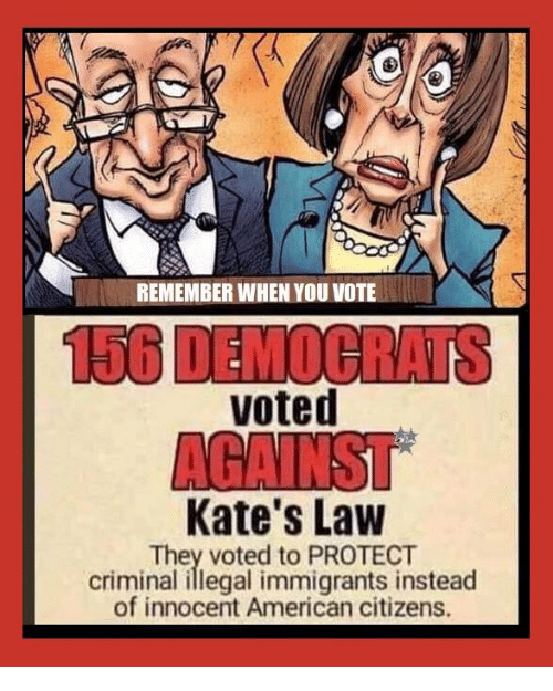 Memes, American, and 🤖: REMEMBER WHEN YOU VOTE  voted  Kate's Law  They voted to PROTECT  criminal illegal immigrants instead  of innocent American citizens.