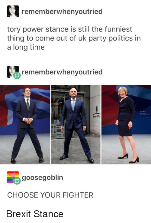 Party, Politics, and Tumblr: rememberwhenyoutried  tory power stance is still the funniest  thing to come out of uk party politics in  a long time  rememberwhenyoutried  one Offic  goosegoblin  CHOOSE YOUR FIGHTER