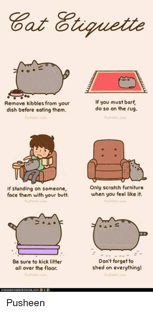 Butt, Memes, and Dish: Remove kibbles from your  dish before eating them.  If standing on someone,  face them with your butt.  an  Be sure to kick litter  all over the floor.  If you must barf  do so on the rug.  Only scratch furniture  when you feel like it.  Don't forget to  shed on everything! Pusheen