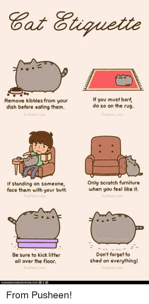 Butt, Memes, and Dish: Remove kibbles from your  dish before eating them.  If standing on someone,  face them with your butt.  an  Be sure to kick litter  all over the floor.  If you must barf  do so on the rug.  Only scratch furniture  when you feel like it.  Don't forget to  shed on everything! From Pusheen!