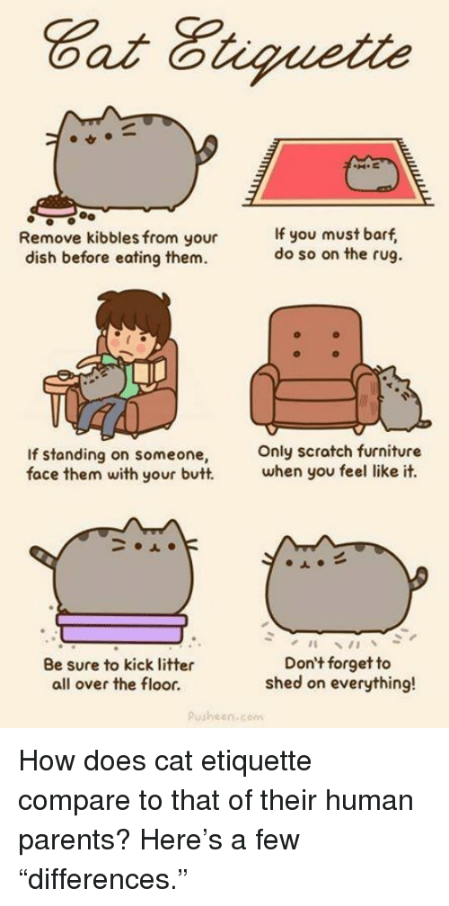 """Butt, Memes, and Parents: Remove kibbles from your  If you must barf  do so on the rug.  dish before eating them.  If standing on someone  only scratch furniture  face them with your butt.  when you feel like it.  Don't forget to  Be sure to kick litter  shed on everything!  all over the floor.  pusheen.com How does cat etiquette compare to that of their human parents? Here's a few """"differences."""""""