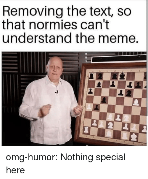 Meme, Omg, and Tumblr: Removing the text, so  that normies can't  understand the meme. omg-humor:  Nothing special here