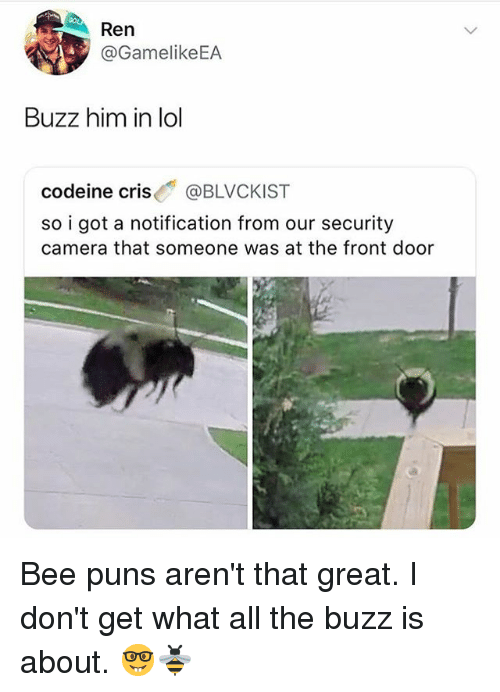 Lol, Memes, and Puns: Ren  @GamelikeEA  Buzz him in lol  codeine cris@BLVCKIST  so i got a notification from our security  camera that someone was at the front door Bee puns aren't that great. I don't get what all the buzz is about. 🤓🐝
