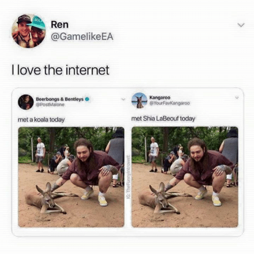 Funny, Internet, and Love: Ren  @GamelikeEA  I love the internet  Beerbongs & Bentleys  @PostMalone  Kangaroo  @YourFavKangaroo  met a koala today  met Shia LaBeouf today