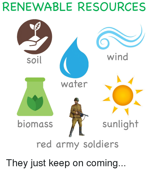 RENEWABLE RESOURCES Wind Soil Water Biomass Sunlight Red