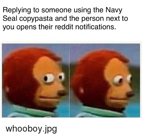 Replying to Someone Using the Navy Seal Copypasta and the Person