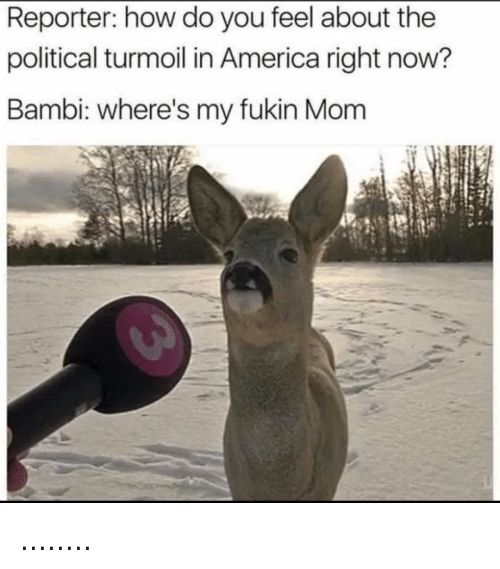 America, Bambi, and Dank Memes: Reporter: how do you feel about the  political turmoil in America right now?  Bambi: where's my fukin Mom