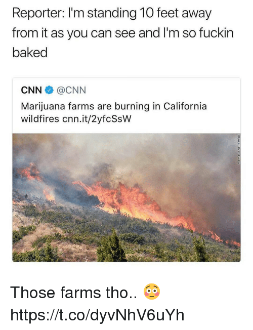 Baked, cnn.com, and California: Reporter: I'm standing 10 feet away  from it as you can see and I'm so fuckir  baked  CNN@CNN  Marijuana farms are burning in California  wildfires cnn.it/2yfcSsW Those farms tho.. 😳 https://t.co/dyvNhV6uYh