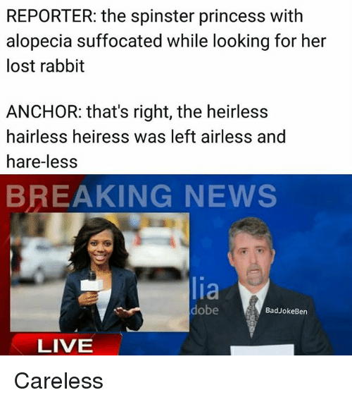 Memes, News, and Lost: REPORTER: the spinster princess with  alopecia suffocated while looking for her  lost rabbit  ANCHOR: that's right, the heirless  hairless heiress was left airless and  hare-les:s  BREAKING NEWS  lia  dobe  BadJokeBen  LIVE Careless