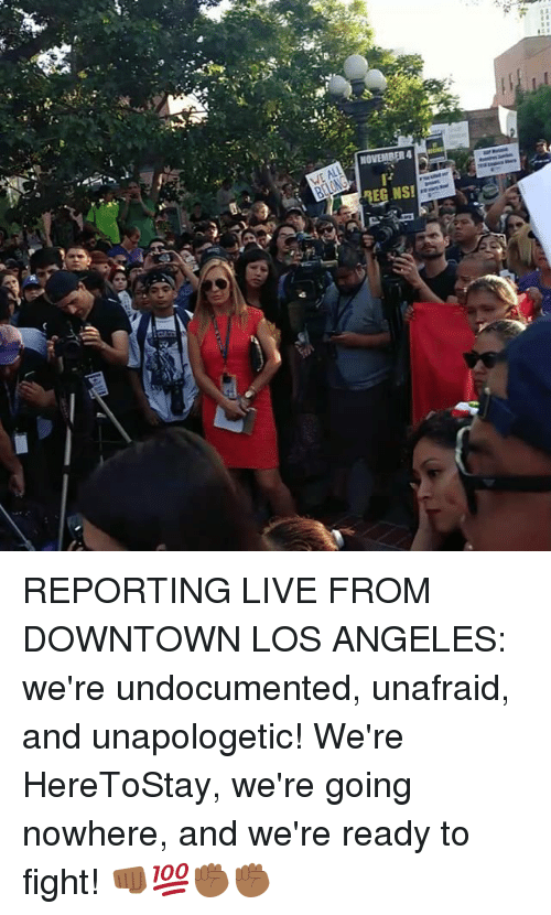 Memes, Live, and Los Angeles: REPORTING LIVE FROM DOWNTOWN LOS ANGELES: we're undocumented, unafraid, and unapologetic! We're HereToStay, we're going nowhere, and we're ready to fight! 👊🏾💯✊🏾✊🏾