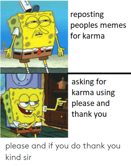 Memes, Reddit, and Thank You: reposting  peoples memes  for karma  asking for  karma using  please and  thank you please and if you do thank you kind sir