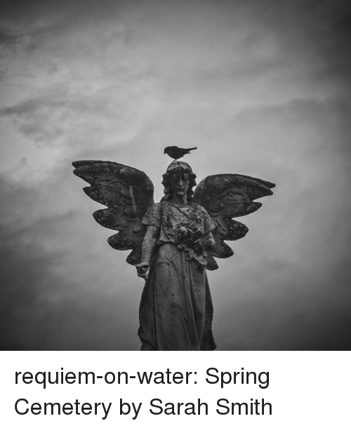 Tumblr, Blog, and Flickr: requiem-on-water:   Spring Cemeteryby  Sarah Smith