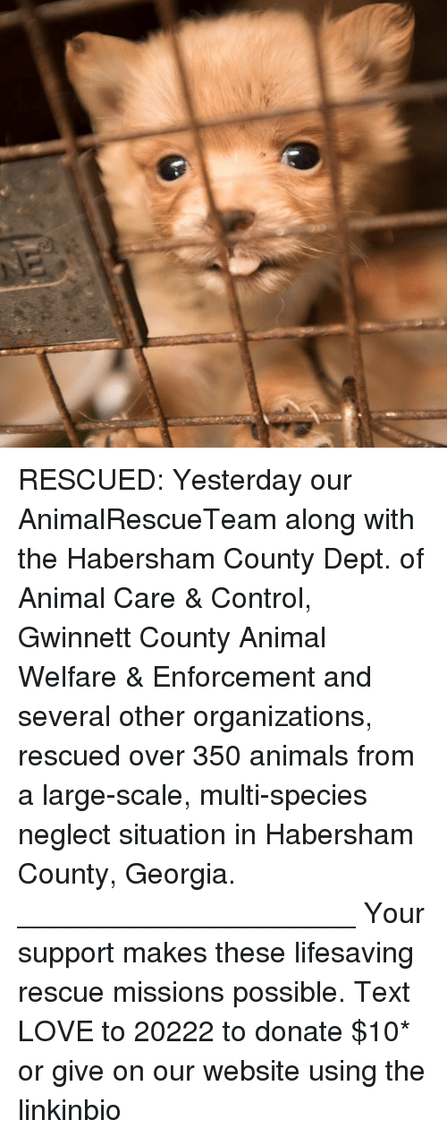 Animals, Love, and Memes: RESCUED: Yesterday our AnimalRescueTeam along with the Habersham County Dept. of Animal Care & Control, Gwinnett County Animal Welfare & Enforcement and several other organizations, rescued over 350 animals from a large-scale, multi-species neglect situation in Habersham County, Georgia. _____________________ Your support makes these lifesaving rescue missions possible. Text LOVE to 20222 to donate $10* or give on our website using the linkinbio