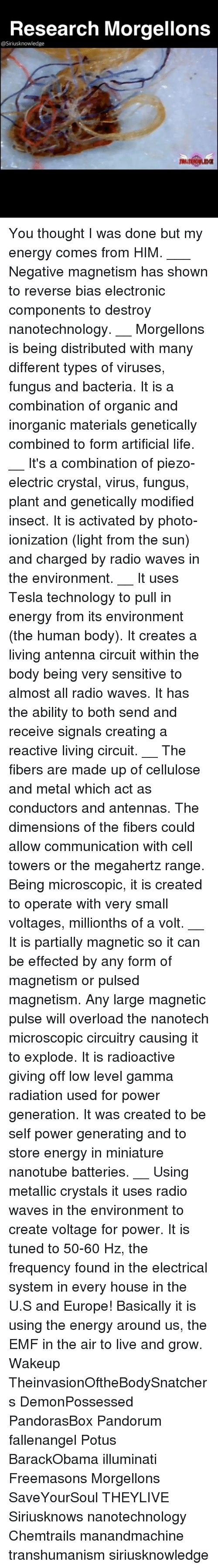 Research Morgellons You Thought I Was Done but My Energy Comes From