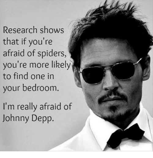 research shows that if youre afraid of spiders youre more 4009370 research shows that if you're afraid of spiders you're more likely