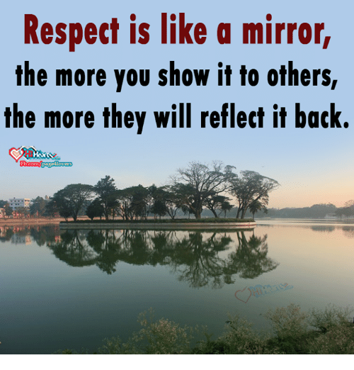 Memes Respect And Mirror Is Like A The More You