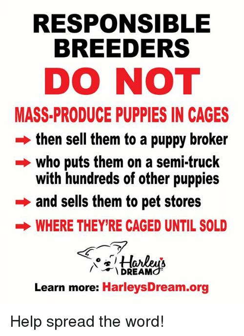 Responsible Breeders Do Not Mass Produce Puppies In Cages Then Sell