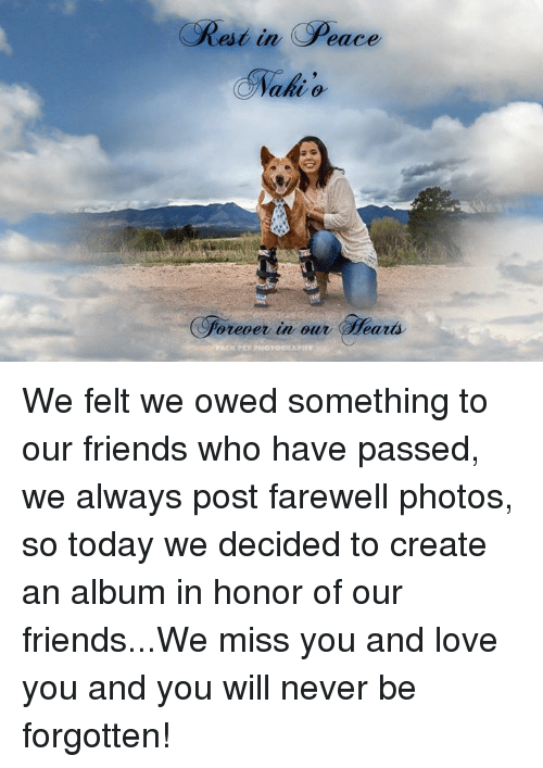 Friends, Love, and Memes: Rest  in Peace  ahi o  forever in our ears We felt we owed something to our friends who have passed, we always post farewell photos, so today we decided to create an album in honor of our friends...We miss you and love you and you will never be forgotten!