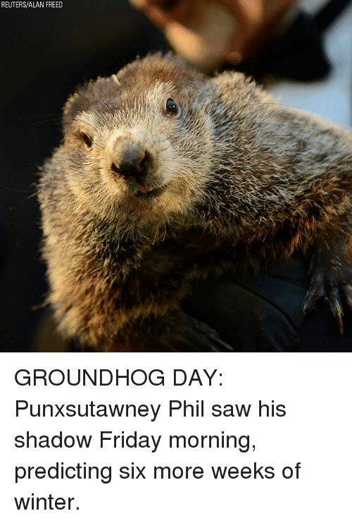 Friday, Memes, and Saw: REUTERS/ALAN FREED GROUNDHOG DAY: Punxsutawney Phil saw his shadow Friday morning, predicting six more weeks of winter.