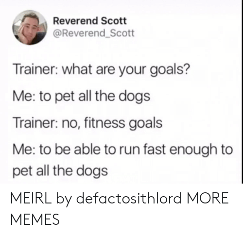 Dank, Dogs, and Goals: Reverend Scott  @Reverend_Scott  Trainer: what are your goals?  Me: to pet all the dogs  Trainer: no, fitness goals  Me: to be able to run fast enough to  pet all the dogs MEIRL by defactosithlord MORE MEMES