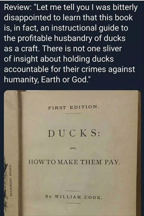 """Disappointed, Drake, and God: Review: """"Let me tell you I was bitterly  disappointed to learn that this book  is, in fact, an instructional guide to  the profitable husbandry of ducks  as a craft. There is not one sliver  of insight about holding ducks  accountable for their crimes against  humanity, Earth or God.""""  FIRST EDITION  DUCKS:  AND  HOW TO MAKE THEM PAY.  By W1LLIAM COOK.  AYLESBURY DRAKE"""