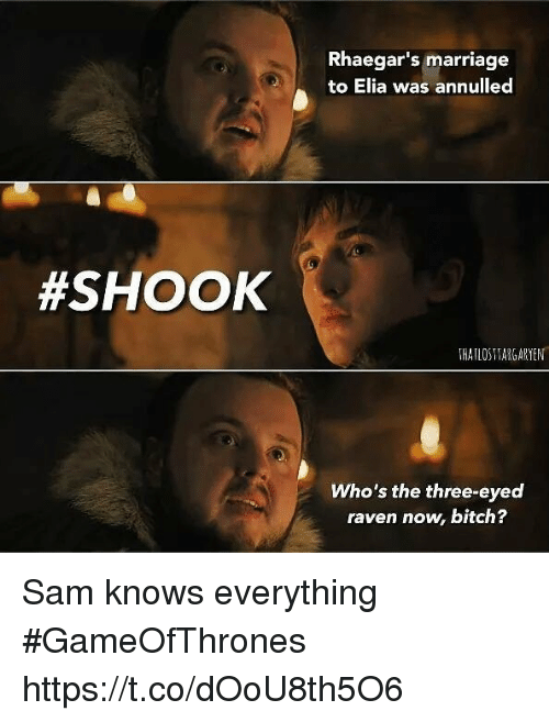 Bitch, Marriage, and Memes: Rhaegar's marriage  to Elia was annulled  #SHOOK  THATLOSTARGARYEN  Who's the three-eyed  raven now, bitch? Sam knows everything #GameOfThrones https://t.co/dOoU8th5O6