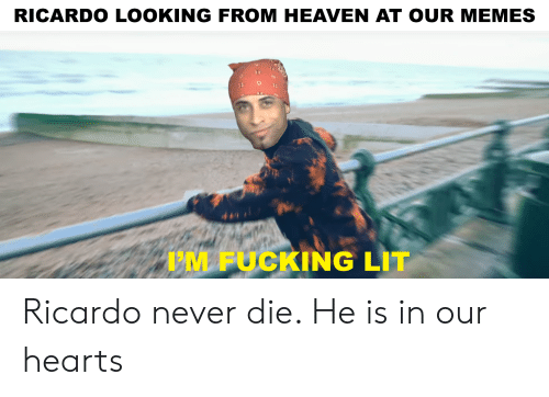 Fucking, Heaven, and Lit: RICARDO LOOKING FROM HEAVEN AT OUR MEMES  'M FUCKING LIT Ricardo never die. He is in our hearts