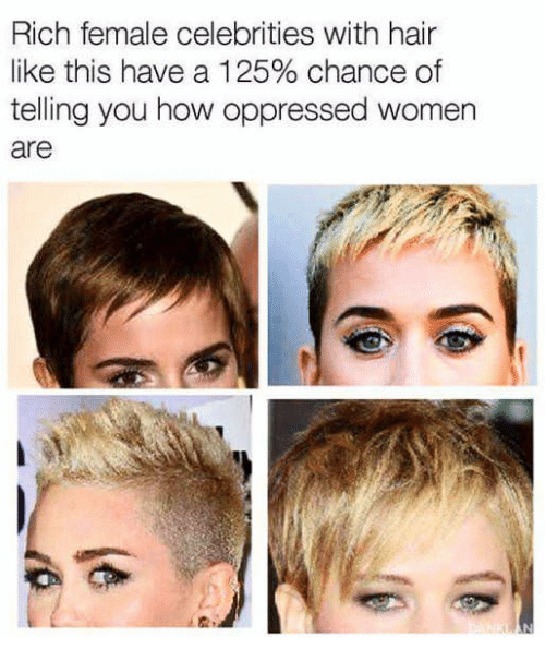 Hair, Women, and Celebrities: Rich female celebrities with hair  like this have a 1 25% chance of  telling you how oppressed women  are