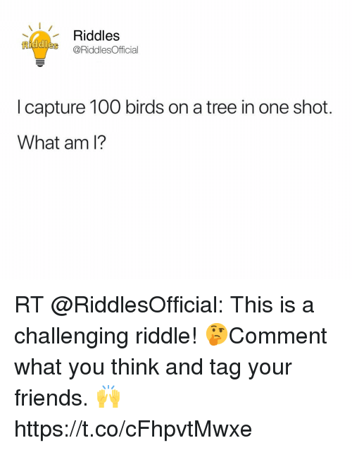 Riddles Ridde@RiddlesOfficial I Capture 100 Birds on a Tree in One