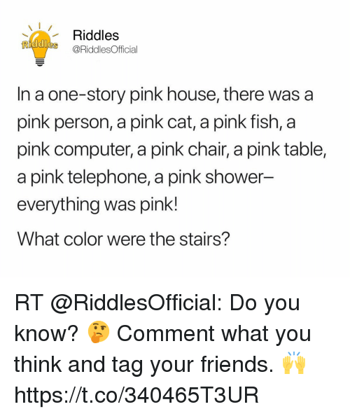 Riddles in a One-Story Pink House There Was a Pink Person a