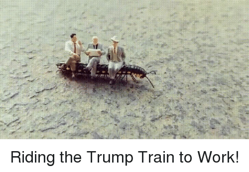 Work, Train, and Trump: Riding the Trump Train to Work!