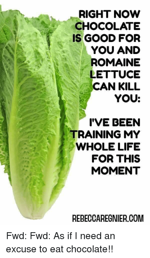 how to tell if lettuce is bad