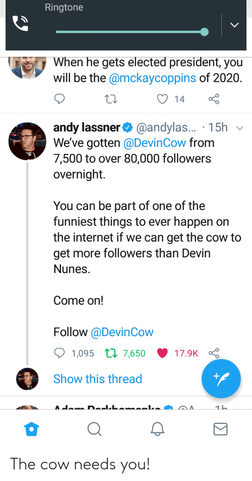 Internet, Politics, and Cow: Ringtone  When he gets elected president, you  will be the @mckaycoppins of 2020.  14  andy lassner@andylas..  We've gotten @DevinCow from  7,500 to over 80,000 followers  overnight.  . 15h v  You can be part of one of the  funniest things to ever happen on  the internet if we can get the cow to  get more followers than Devin  Nunes.  Come on!  Follow @DevinCow  1,095 п 7,650 17.9K  Show this thread The cow needs you!