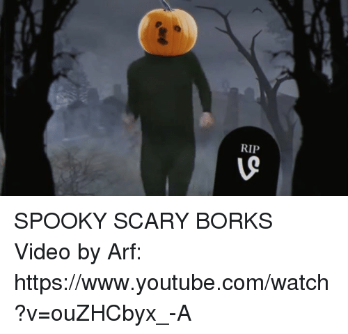 Dank, Videos, and youtube.com: RIP  5 SPOOKY SCARY BORKS  Video by Arf: https://www.youtube.com/watch?v=ouZHCbyx_-A
