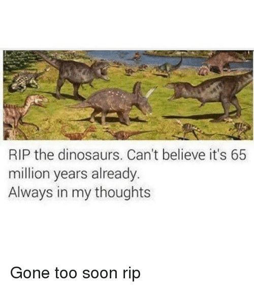Memes, Soon..., and Dinosaurs: RIP the dinosaurs. Can't believe it's 65  million years already  Always in my thoughts Gone too soon rip