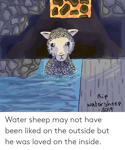 Rip Watersheep 2019 Water Sheep May Not Have Been Liked On The Outside But He Was Loved On The Inside Water Meme On Me Me Kill the magma block 😡. rip watersheep 2019 water sheep may